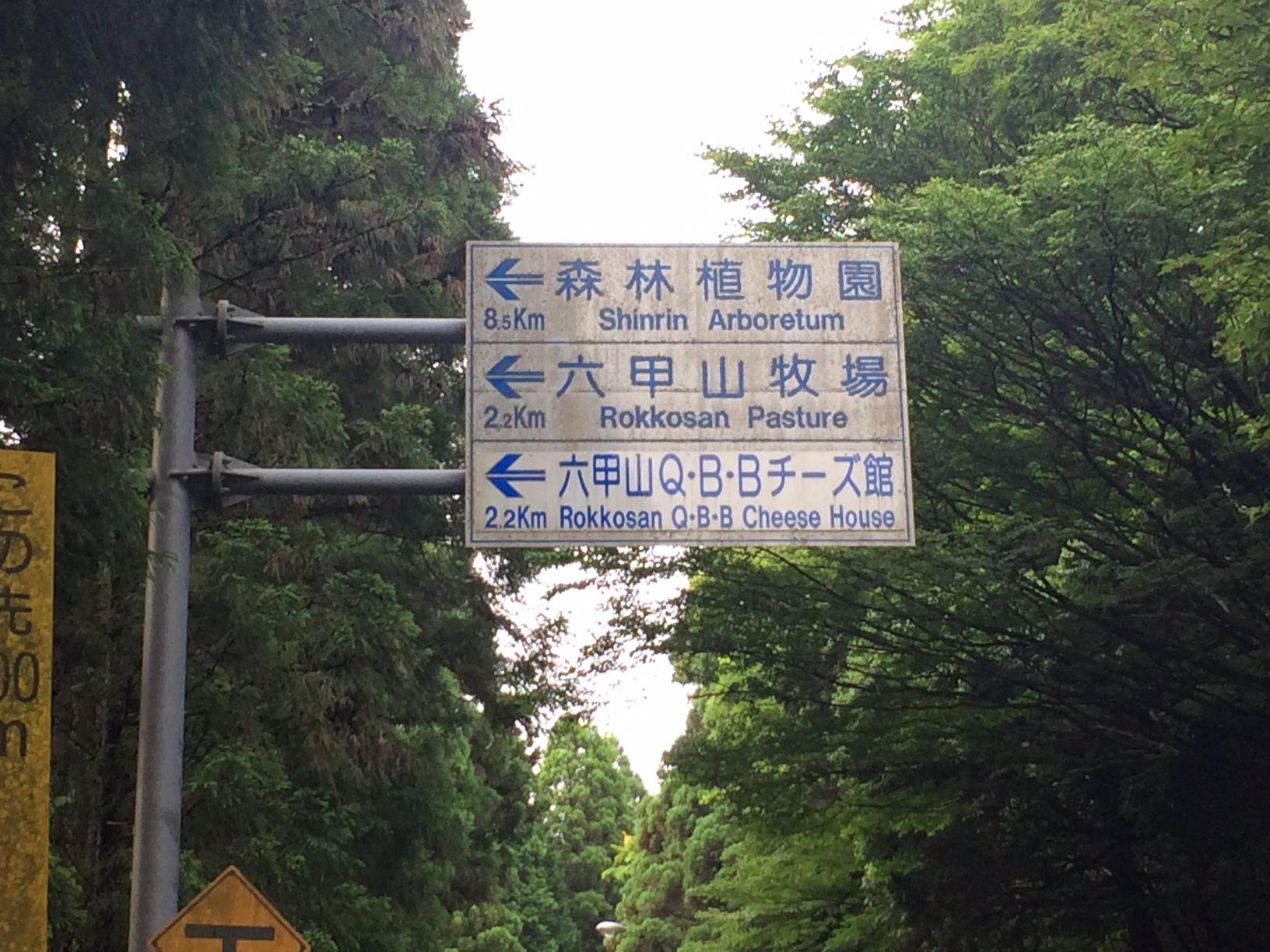 20150619表六甲16.JPG