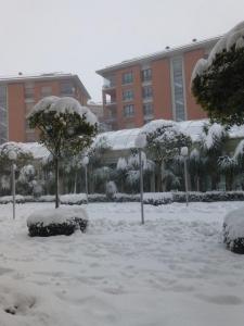 snow_20150218233332e33.jpg
