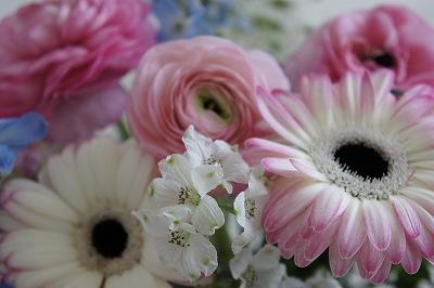 2015・4月お花1