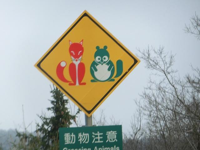 赤い狐と緑の狸