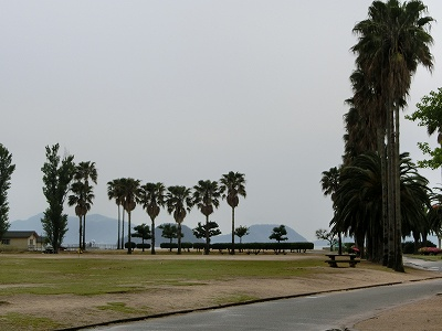 うさぎ島6