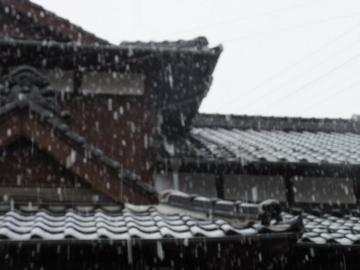 雪みぞれ雷2