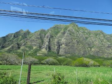 ハワイ観光5
