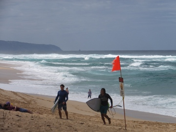 ハワイ観光15