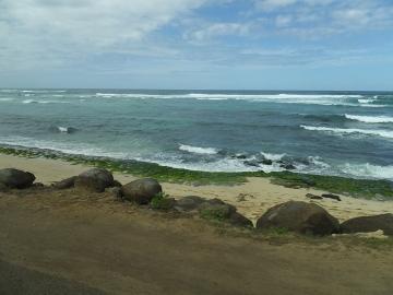 ハワイ観光18