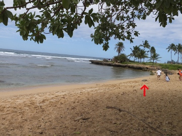 ハワイ観光21