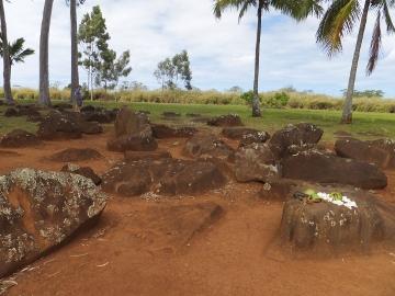ハワイ観光29