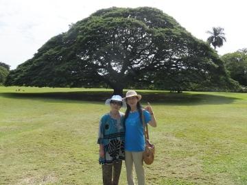 ハワイ観光34