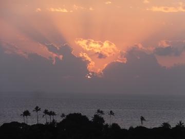 ハワイ観光51