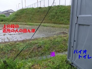 大雨に浸かった畑4