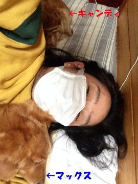 風邪で寝込む