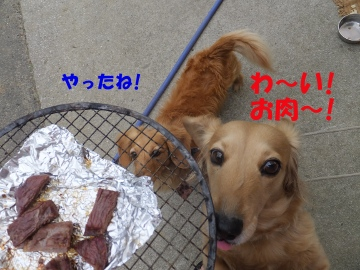 ピザとイノシシ肉7