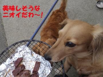 ピザとイノシシ肉8