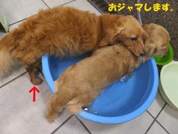 お風呂はやっぱり3