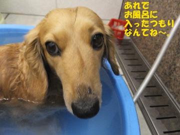 お風呂はやっぱり6