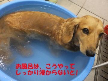 お風呂はやっぱり7