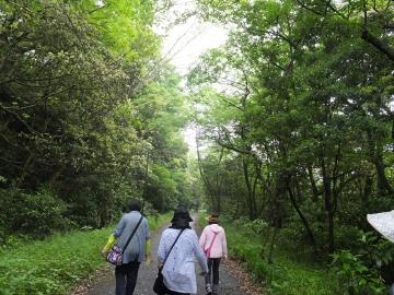 山田緑地2
