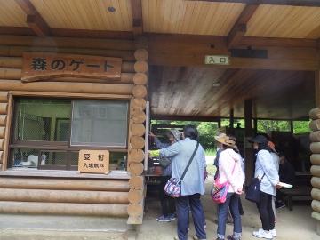 山田緑地3