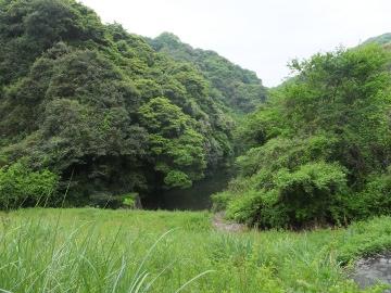 山田緑地4