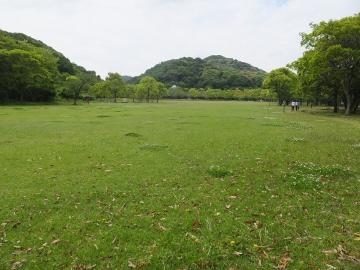 山田緑地14