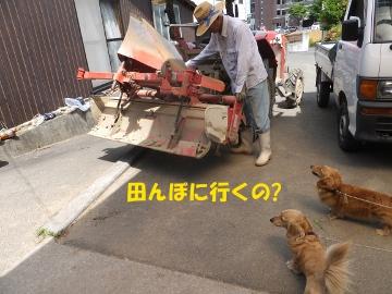 お父さんどこ行くの?2