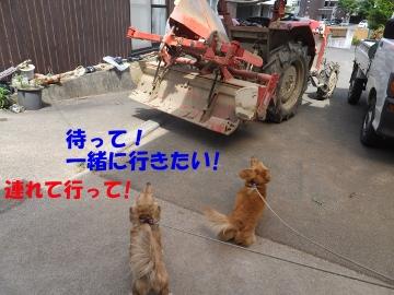 お父さんどこ行くの?3