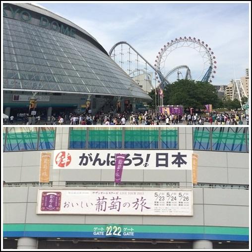 2015-0523 (8)