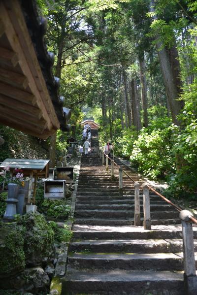 急こう配の階段