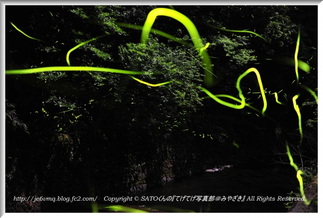 DSC_1247-1.jpg