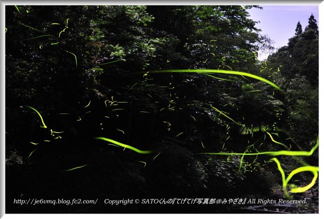 DSC_1256-1.jpg