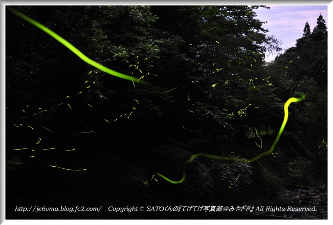 DSC_1259-1.jpg