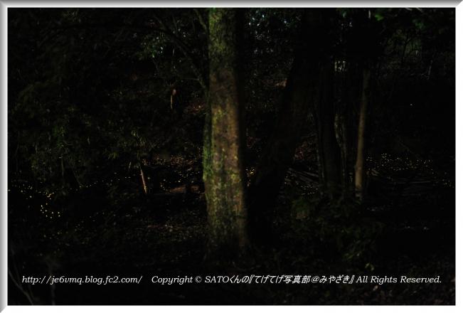 DSC_1262-1.jpg