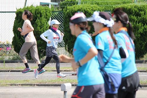 絆マラソン2015 (2)