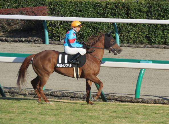 モルジアナ・返し馬7