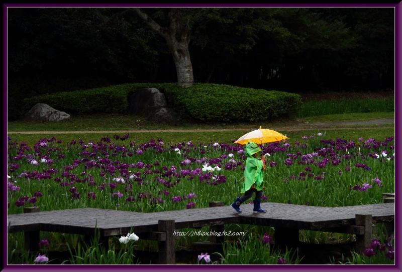 IMG_8841(blog).jpg
