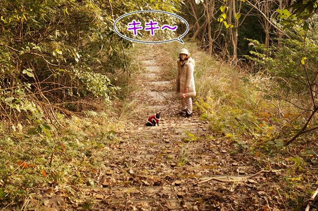 1月30日遊歩道 (5)