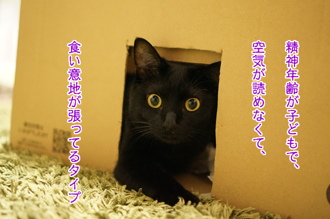 6_20150309135016a47.png