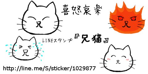 banner_ani.jpg