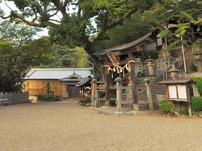 hateao-zenkoku_06-4.jpg