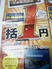 aichi_DS