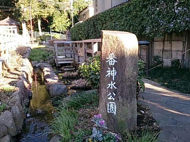 ゆうペットシニア(神奈川県座間市) | サービス付き …