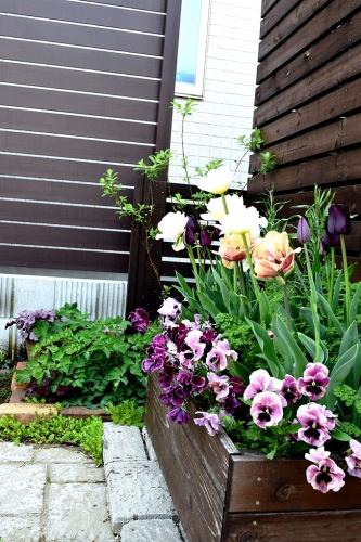 駐車場花壇