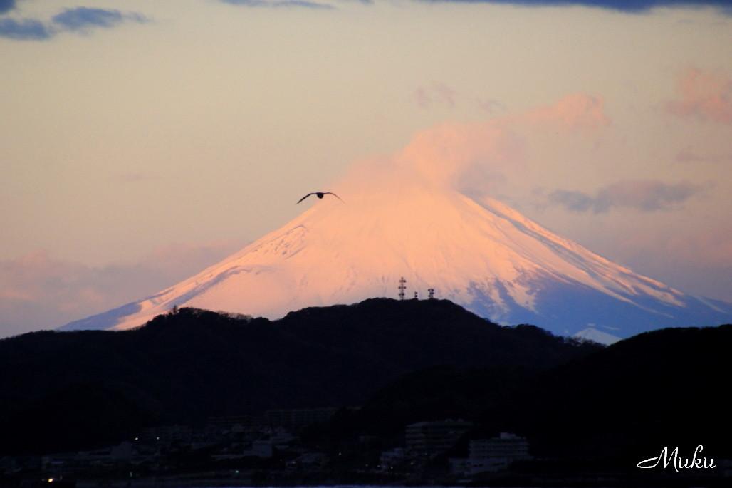 2015.1.1 東京湾の初富士 (横須賀方面:神奈川県横須賀市)