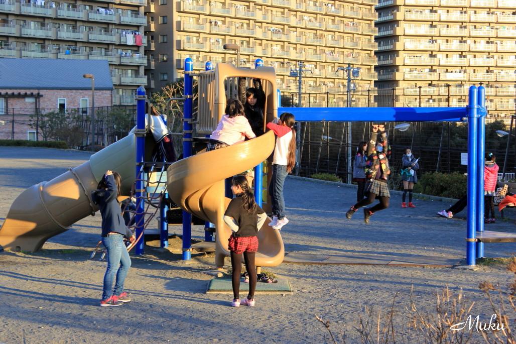 2015.1.10 公園 (散歩道:神奈川県横須賀市)