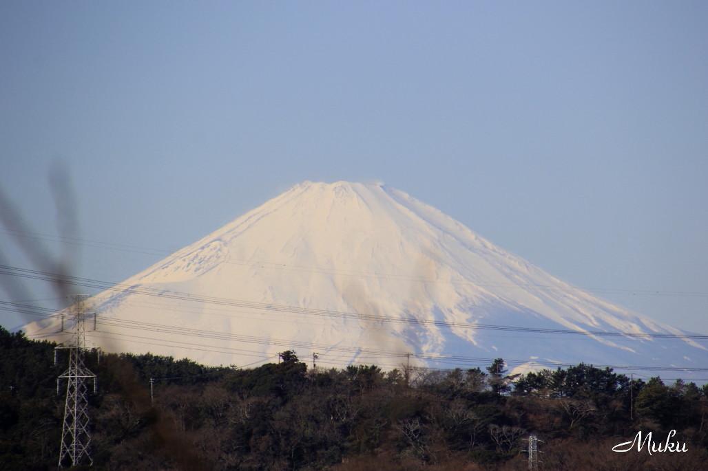 2015.1.18 遠富士 (衣笠山:神奈川県横須賀市)