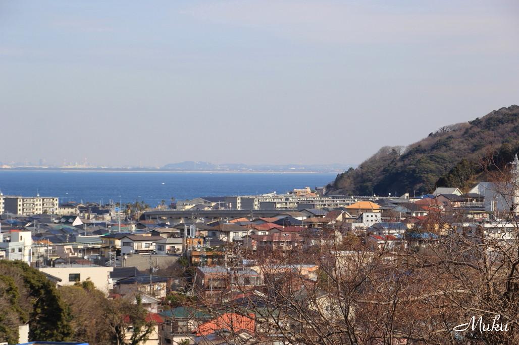 2015.2.4 東京湾 (散歩道:神奈川県横須賀市)
