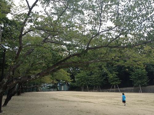 風頭公園12