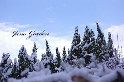 雪150201