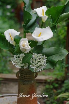 白い花150512