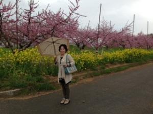 i桃の前mage1